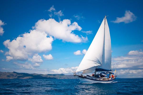 Vino cu mine! Click, Like! and lets sail!
